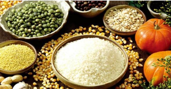 漫谈|种植玉米和大豆有政策保障