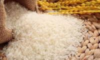 辽宁:后发赶超加快建设粮食产业强省