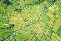 """""""极境寒养""""绘出黑河绿色农业发展新画卷"""